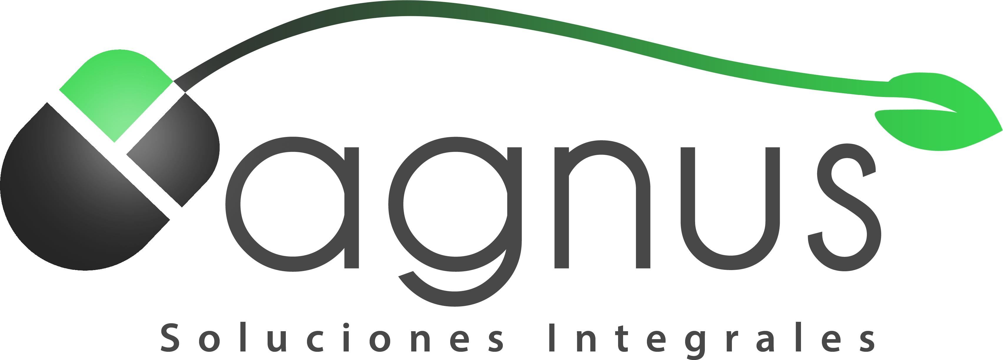 Agnus soluciones SPA